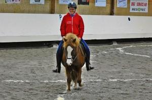 glad matte glad häst